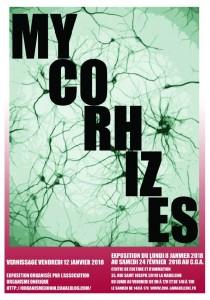 micorhises2